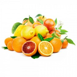 Mixed citrus fruit case 10 kg.
